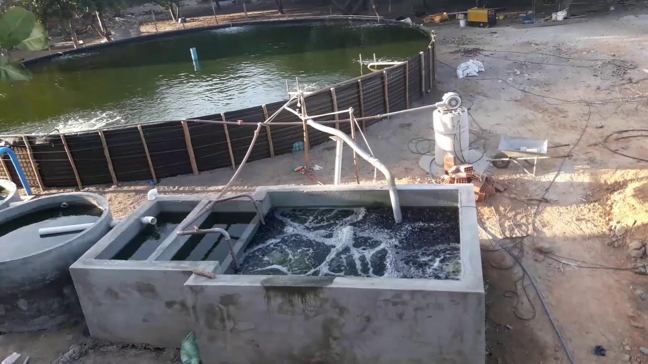 Tanque geomembrana 16m com filtro biol gico youtube for Tanques para cachamas