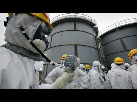 Fukushima disaster was preventable - new study