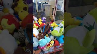 Выиграл в автомате с игрушками