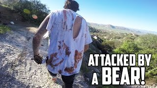 VICIOUS BEAR ATTACK! (Warning: GRAPHIC CONTENT)