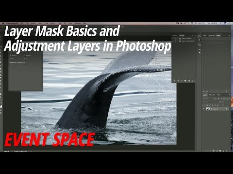 Layer Mask Basics and Adjustment Layers in Photoshop