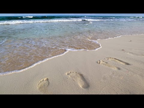 Travel to Cancun Mexico & Tour of our Royal Sands Resort Beachfront Villa