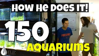 How One Man Manages FIVE (5) Fish Rooms in His Basement - Over 150 Aquariums