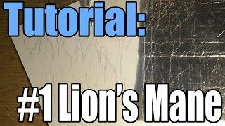 Tutorial: #1 How I Draw a Lion