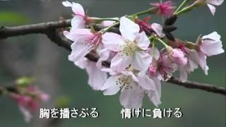 艶花恋 坂本冬美 作詩:池田充男 作曲:豬侯公章.