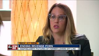 Florida's Revenge Porn Law, is it working? |WFTS Investigative Report