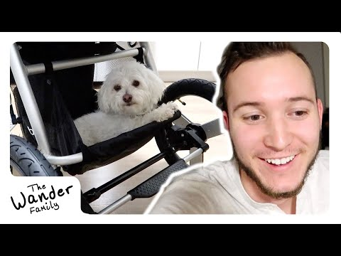 NEW BABY STROLLER!! 🏃 Best Jogging + Running Stroller