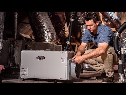 Whole House Dehumidifiers: Pros & Cons | Sylvane