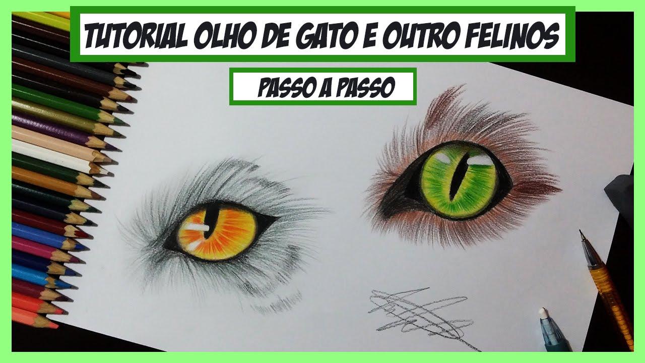 como desenhar olho de gato e outros felinos passo a passo how to