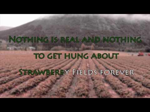 bumblefoot - strawberry fields forever - karaoke