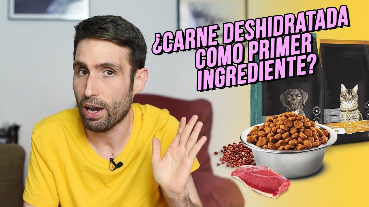 ¿Carne deshidratada como primer ingrediente del pienso es malo?