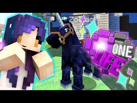 Placing My FAIRY HORSE Order!!   Ep. 18   One Life Minecraft SMP