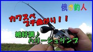 【メジャー】 さかなのものさしや https://sakananomonosashi.amebaownd...