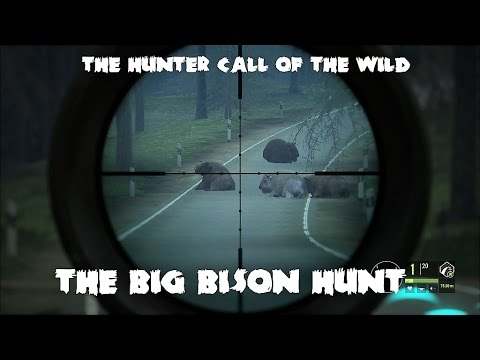 theHunter - Call of the wild - The Big Bison Hunt