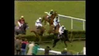 1982 Daily Express Triumph Hurdle
