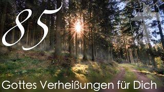 Gottes Verheissungen fur Dich - 1. Johannes 5,11 Videokalender 85365 - Deutschland brauch ...