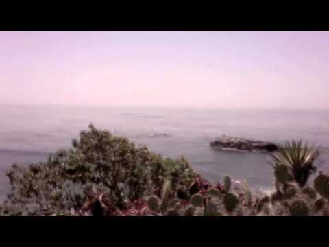 Laguna Beach Ecosystem(: