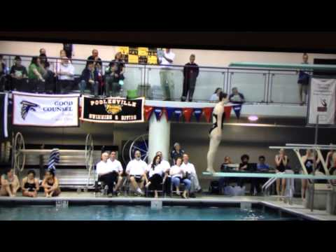 """Brighid Dunn"" - 2015 Washington Metro Diving Championships"