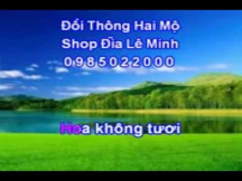 Le Minh Doi Thong Hai Mo