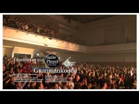 Laurent Garnier-GNANMANKOUDJII  Live @ salle Pleyel.mov