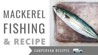 Mackerel with Beetroot and Apple Slaw - Campervan Cooking & Mackerel Fishing in Looe, Cornwall
