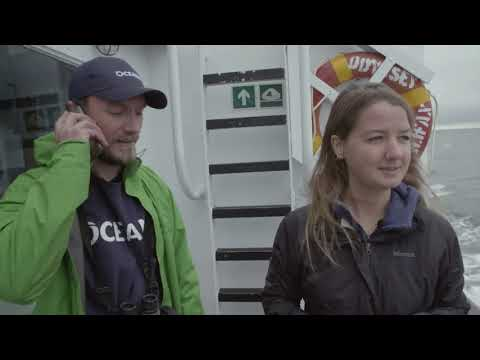 Gulf of St. Lawrence expedition log 2: American Bank