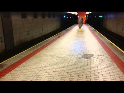 New York City Subway - Rat walking around