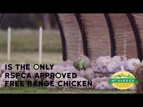 RSPCA Approved Mt Barker Free Range Chicken