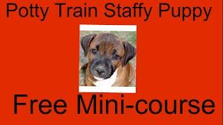 **WOW** Potty Train Staffy Puppy - Free Mini-course on Potty Train Staffy Puppy