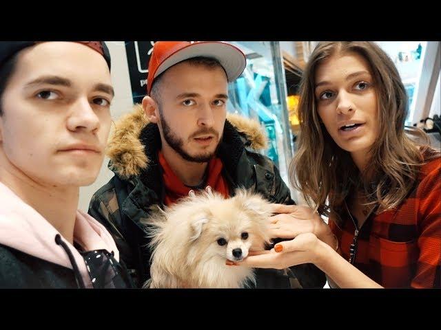 Našli sme Mome psa!