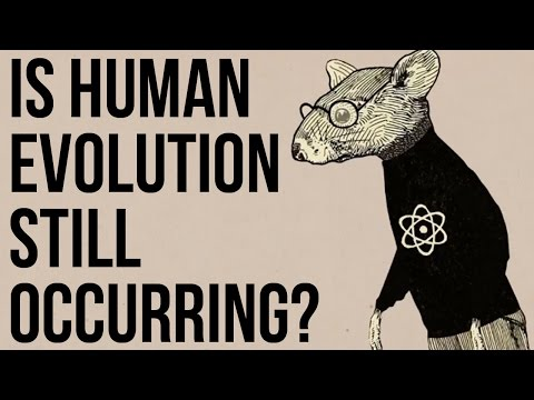 Is Human Evolution Still Occurring?