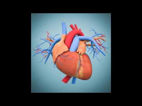 Hearth diseases on man