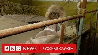 После «Чернобыля»: туристы едут в Припять