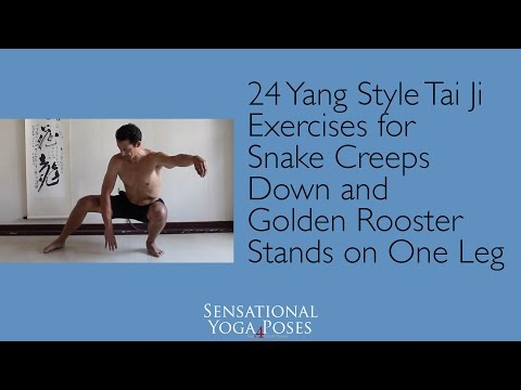 Snake Creeps Down and Golden Rooster Stands on One Leg (24 Style Tai Ji)