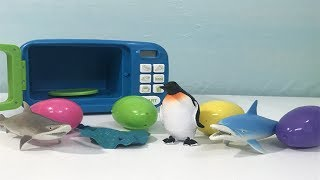 Learn Colors with Sea Creatures in Magic Microwave For Kids