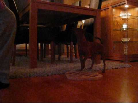 Tia prøver seg på Dog Fighter fra Nina Ottoson