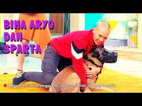 Bima Aryo dan SPARTA | OKAY BOS (13/11/19) Part 4