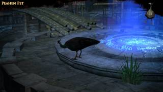Path of Exile - Peahen Pet