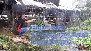 H-2 Idul Fitri - Mancing Ikan Betok di P...