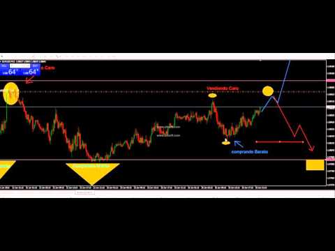 Trading intradia forex