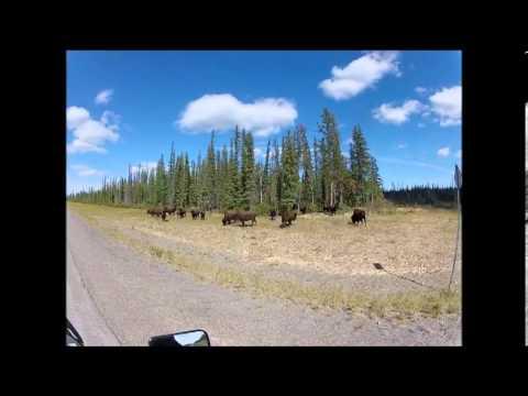 Riding a KLR 650 Yellowknife Northwest Territories