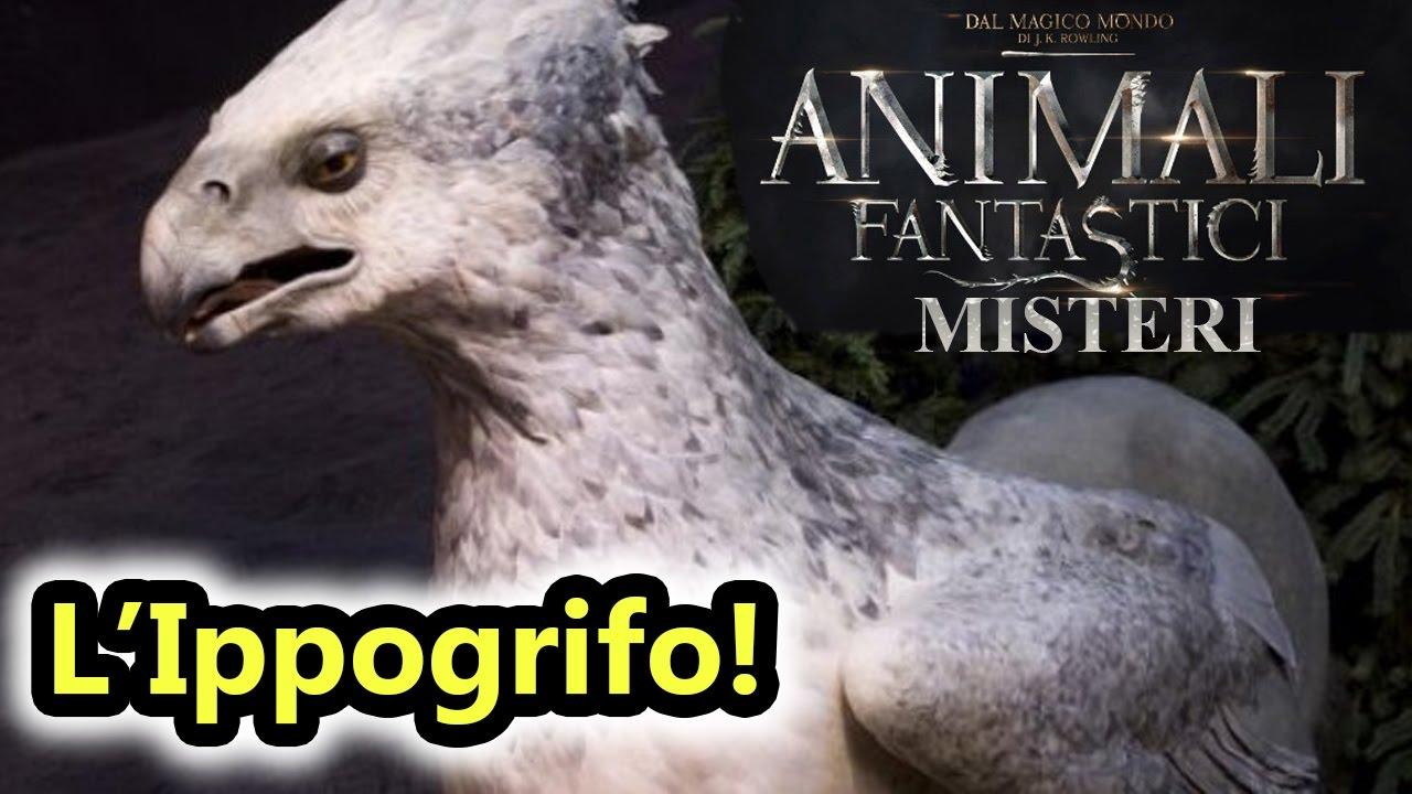 Animali Fantastici Misteri - L'attacco dell'IPPOGRIFO ...