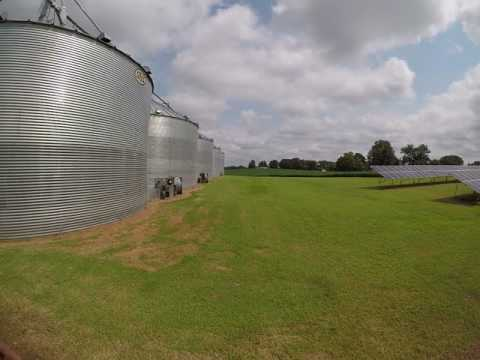 Grain drying and storage West Tennessee near Ripley TN