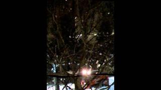 Kubota pushes snow in Boston snow storm.
