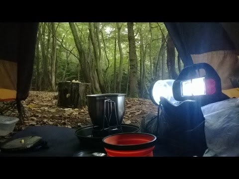 Deep wood wildcamping, UK