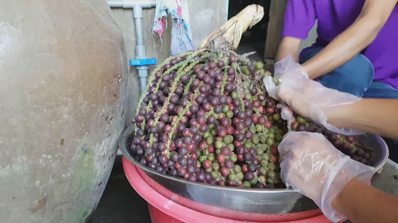0764 Cách Ngâm Rượu Trái Đủng Đỉnh  Rất Thơm và Ngon l Making Vietnamese Whisky