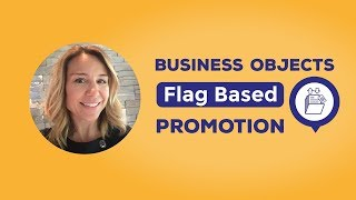 Business Objects Flag Based Promotion