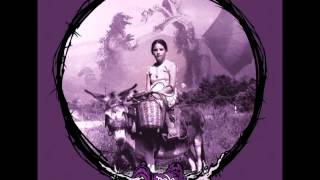 Dala Sun - Riding Donkeys Backwards