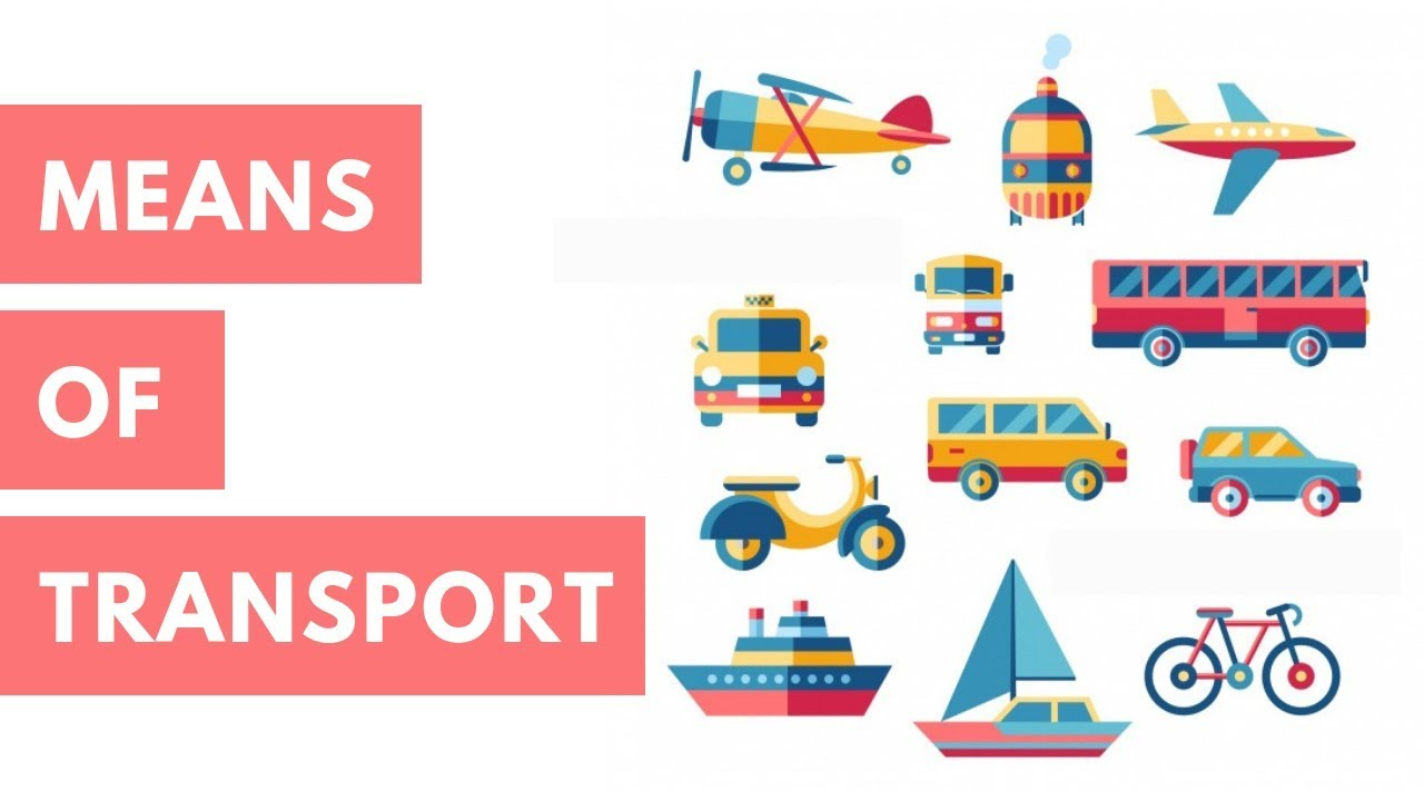 Class 2 EVS - Means of Transport For Kids | CBSE Board