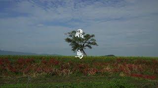 蘇我馬子の発願により日本初の本格的寺院として完成したのが「飛鳥寺」...